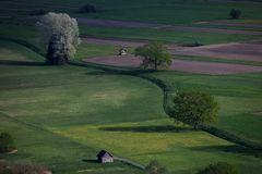 Morgensonne auf den Frühlingsfeldern
