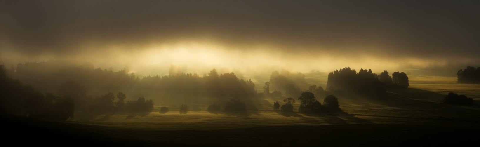 Morgensonne bei Hopferau
