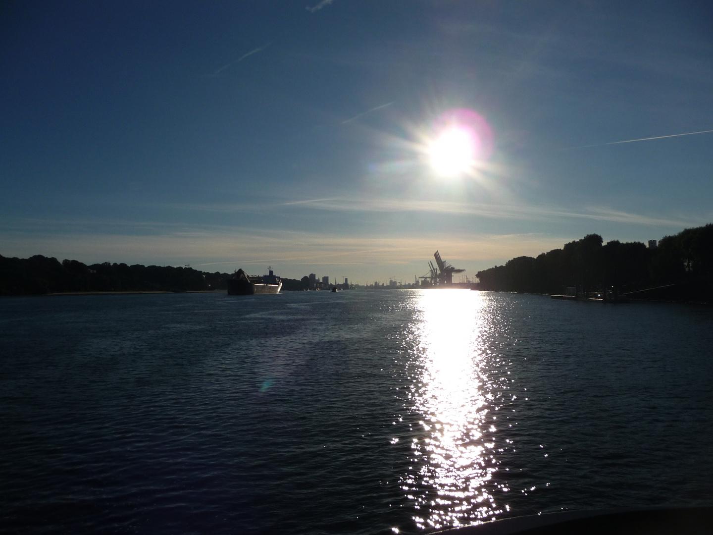 Morgensonne über der Elbe