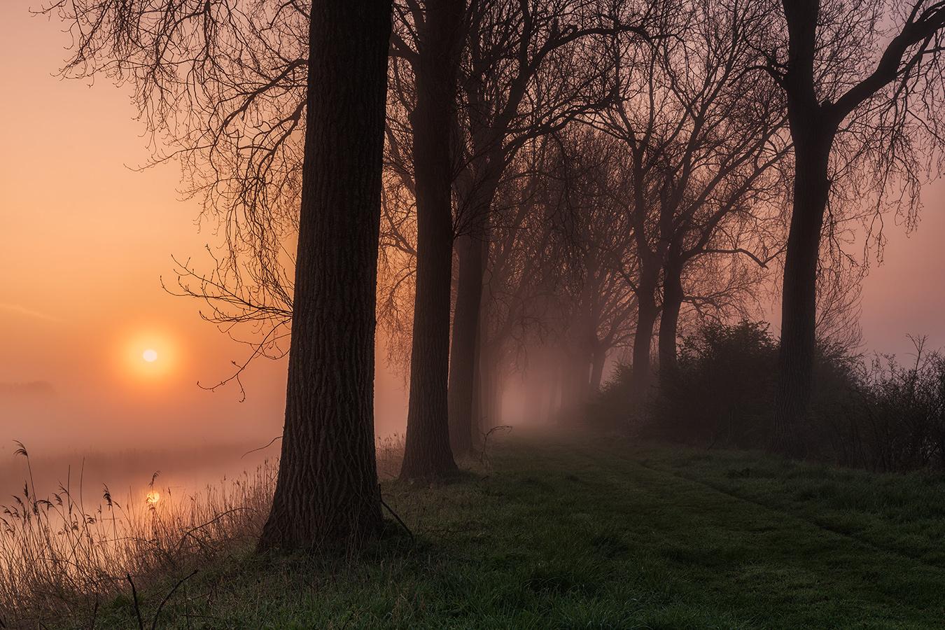 Morgenspaziergang am Kanal