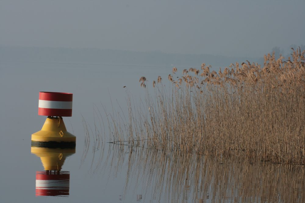 Morgenspaziergang am See_1