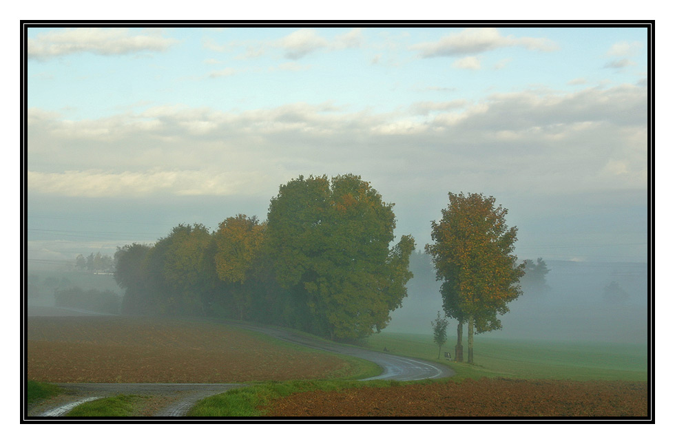 Morgenspaziergang