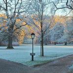 Morgenspaziergang -- kalt aber schön - Gräflicher Park Bad Driburg