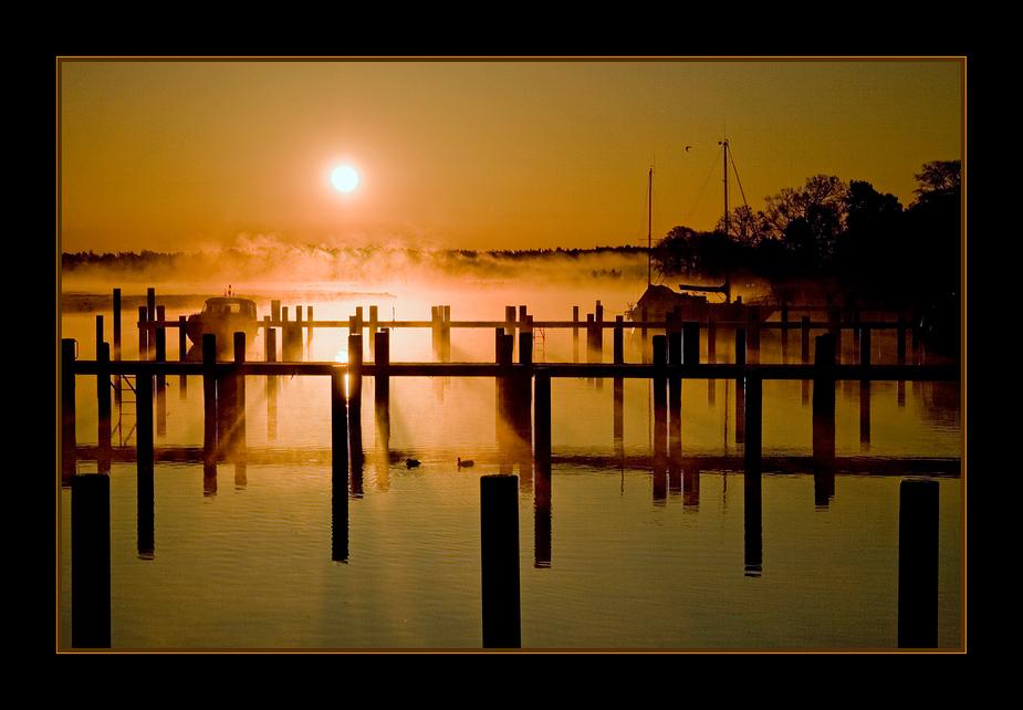 Morgenspektakel am Prerower Hafen