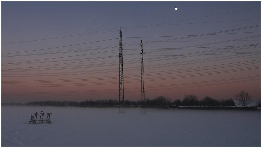 Morgensternsheide 4 (Reload)