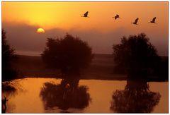 Morgenstimmung am Lac de Dér