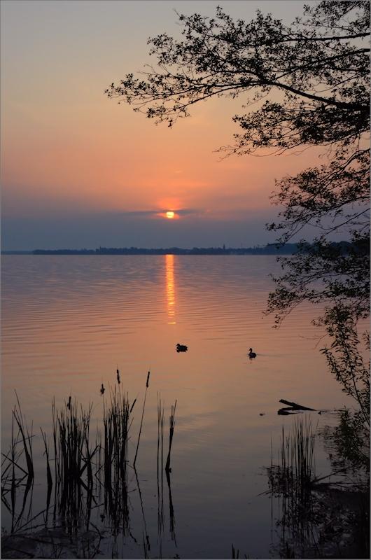 Morgenstimmung am See..