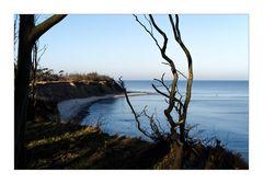 Morgenstimmung am Strand von Lancken