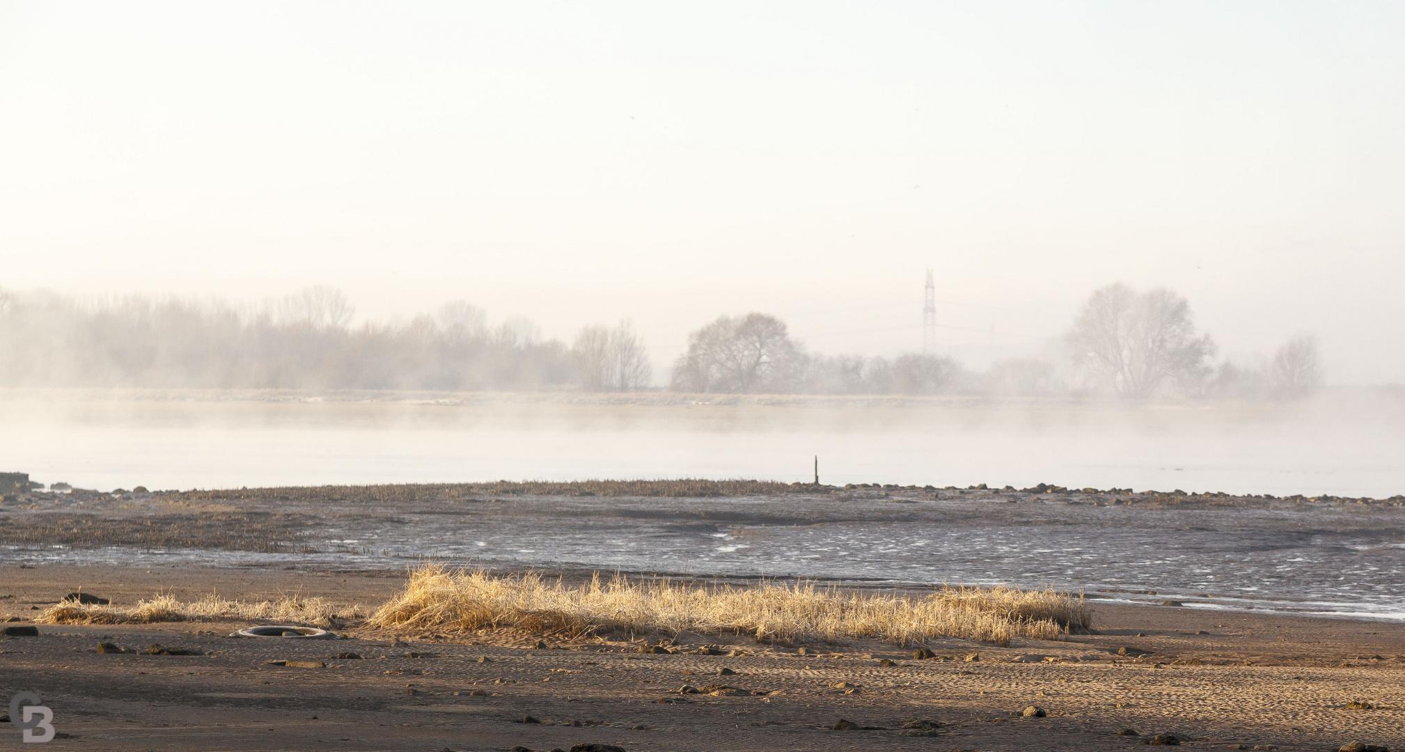 Morgenstimmung an der Weser