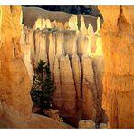 Morgenstimmung im Bryce Canyon