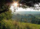 Morgenstimmung im Erzgebirge