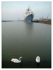 Morgenstimmung im Hafen