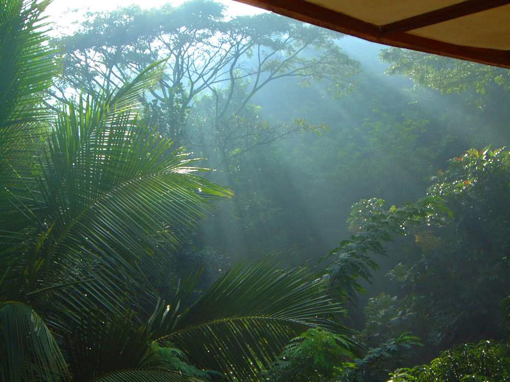 Morgenstimmung im Hotel beim Frühstück