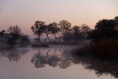 Morgenstimmung im Mamili Nationalpark