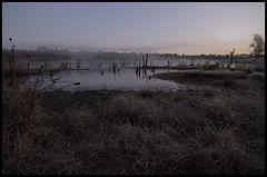Morgenstimmung im Moor in Farbe