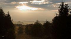 Morgenstimmung im Nationalpark Kellerwald
