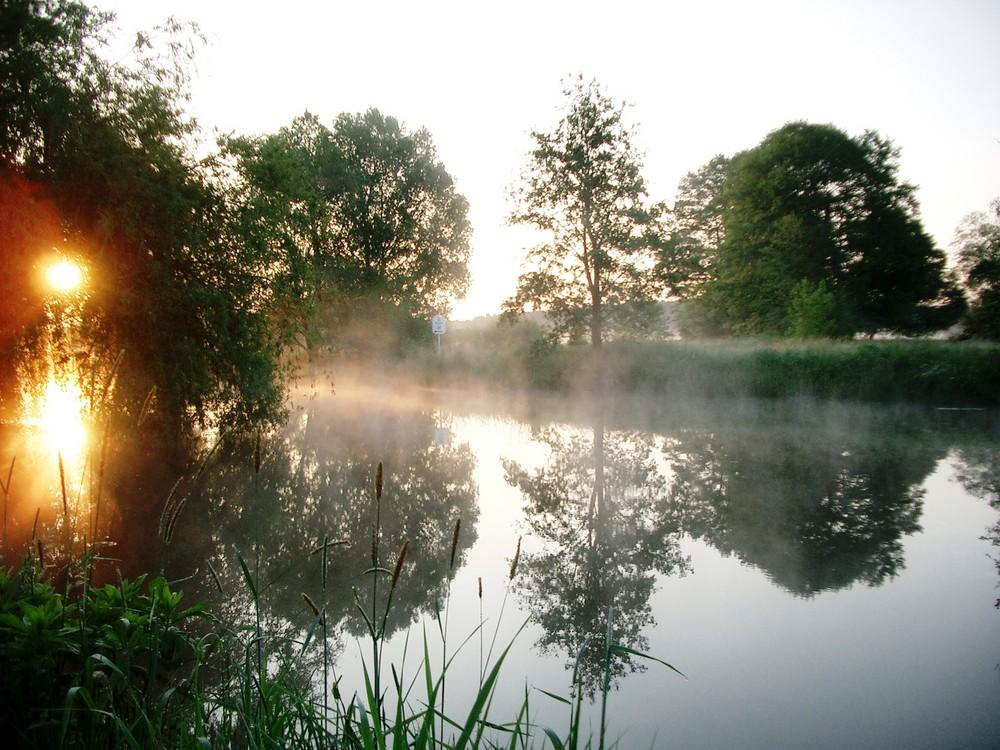 Morgenstimmung im Spreewald