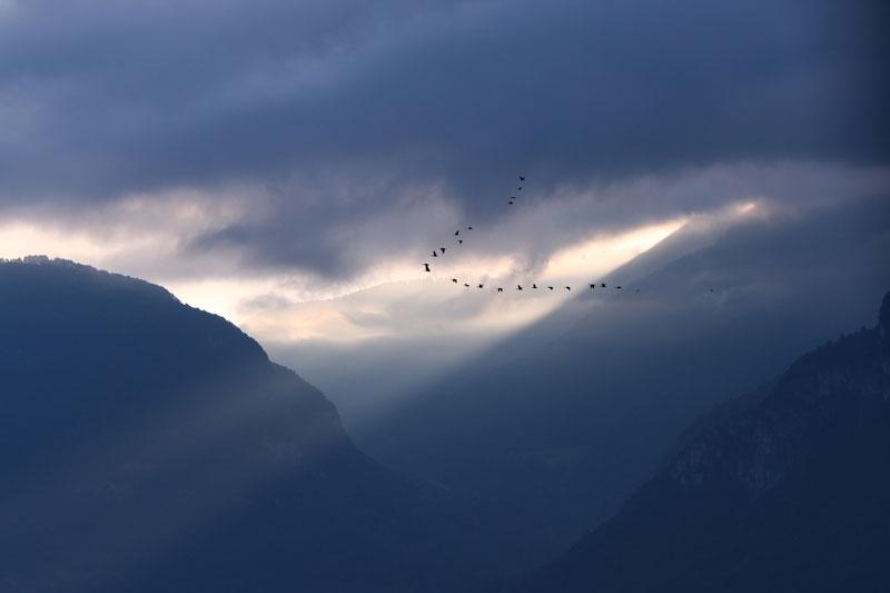 Morgenstimmung im Südtiroler Unterland