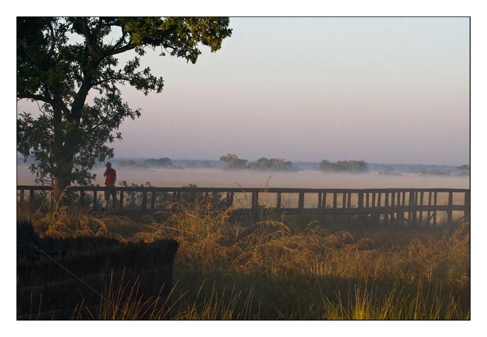 Morgenstimmung in den Plains