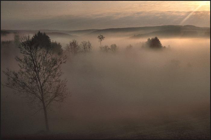 Morgenstimmung in Rochehaut
