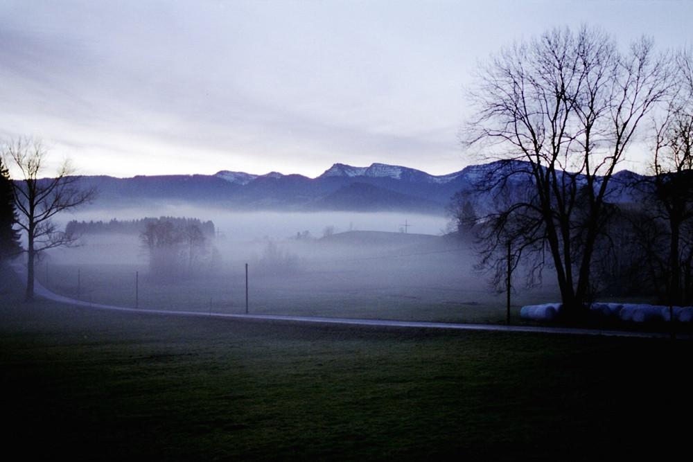 Morgenstimmung in Wolfsried