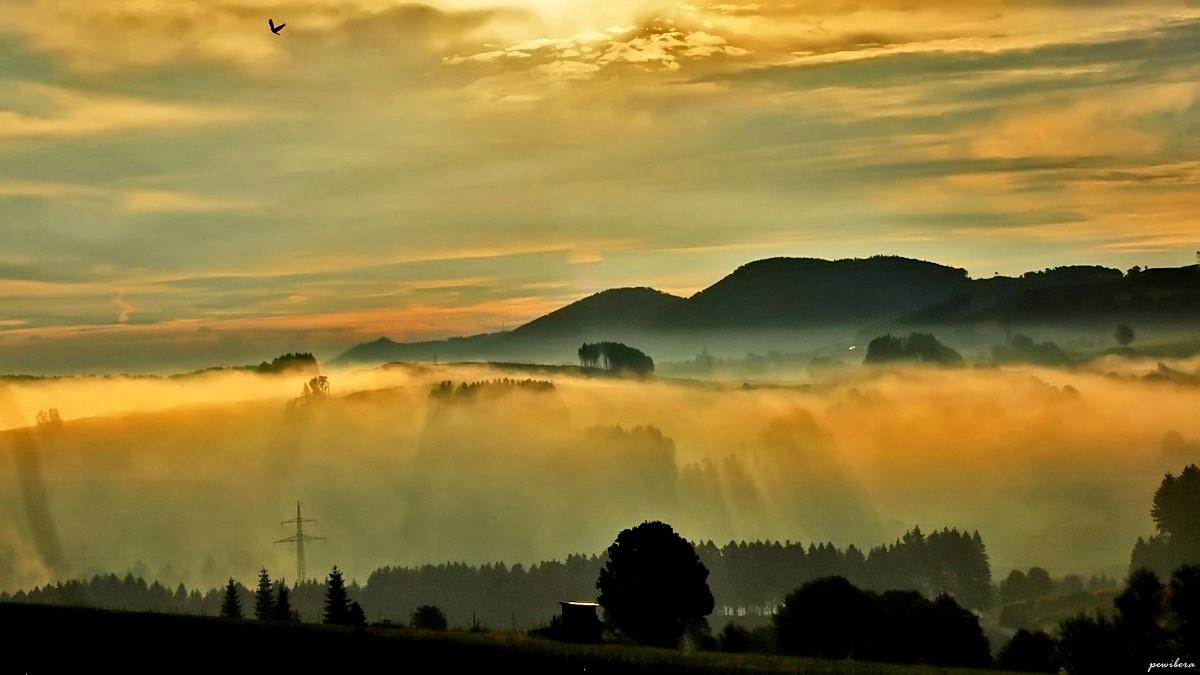 Morgenstimmung mit Nebel, und Sonnenlicht