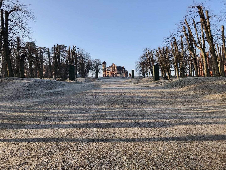 Morgenstimmung Schweriner Schlosspark
