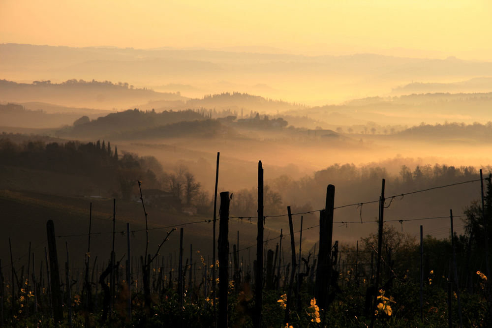 Morgenstimmung Toscana 3