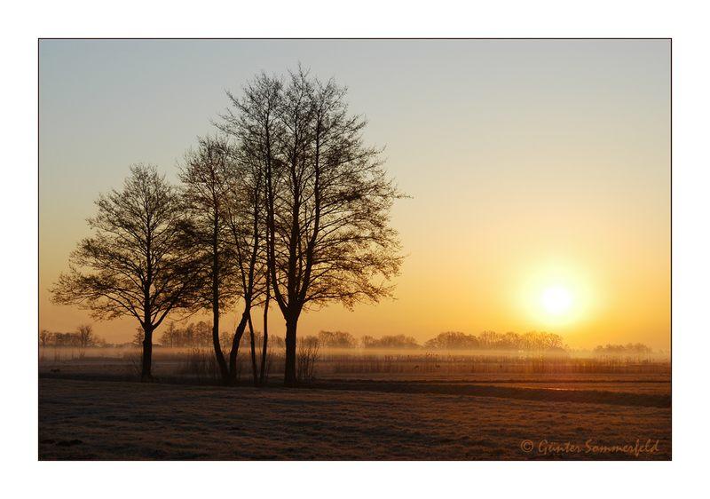 Morgenstund' . . .