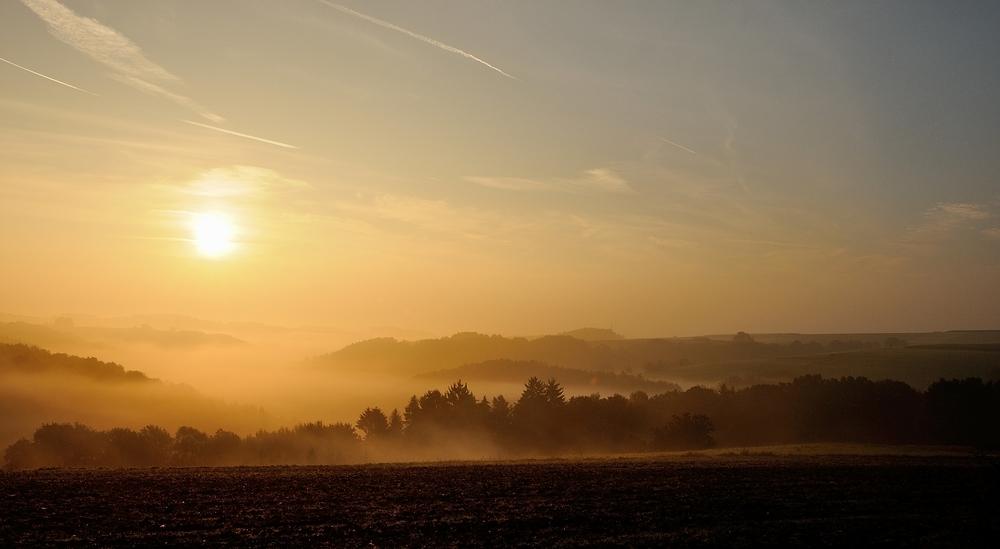 Morgenstund hat Gold im Mund, die Pfalz erwacht, Sonnenaufgang auf der Sickinger-Höhe..