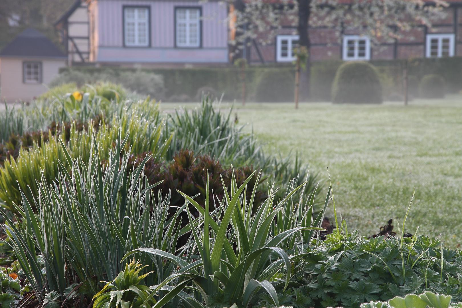 Morgentau im Schlosspark