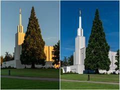 mormonisch