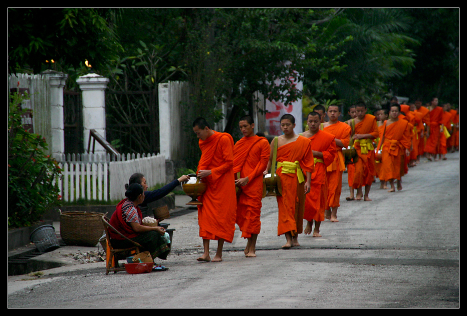 ... Morning Alms in Luang Prabang ...