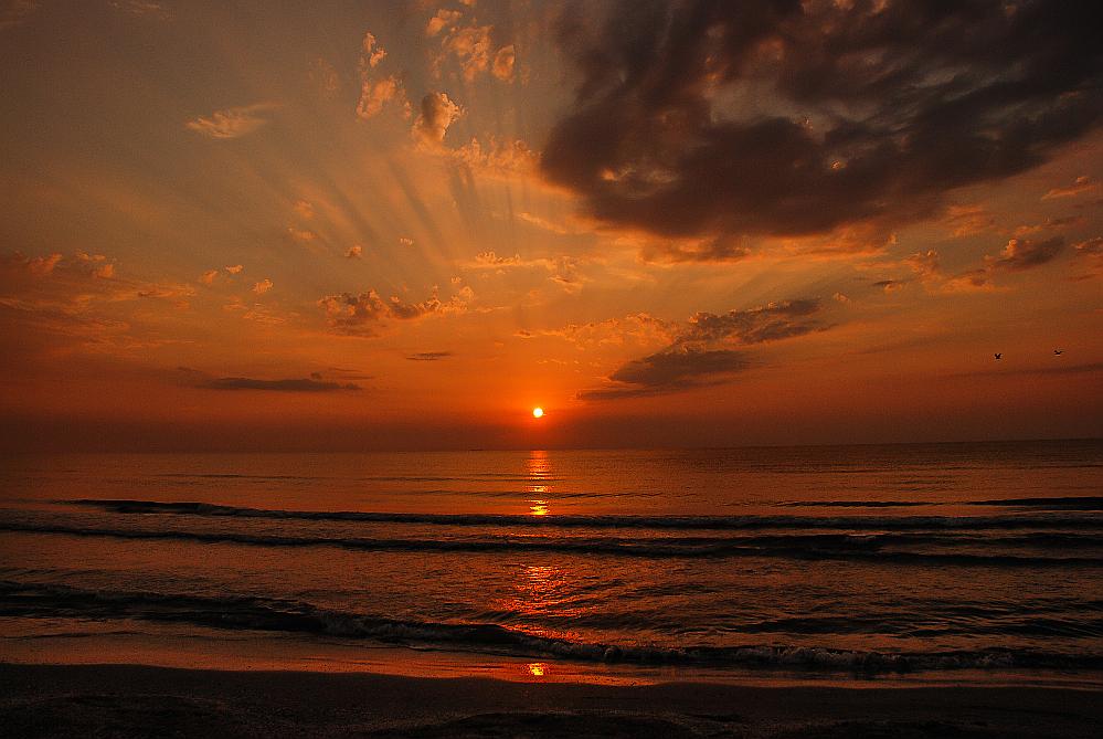 morning at the Black Sea