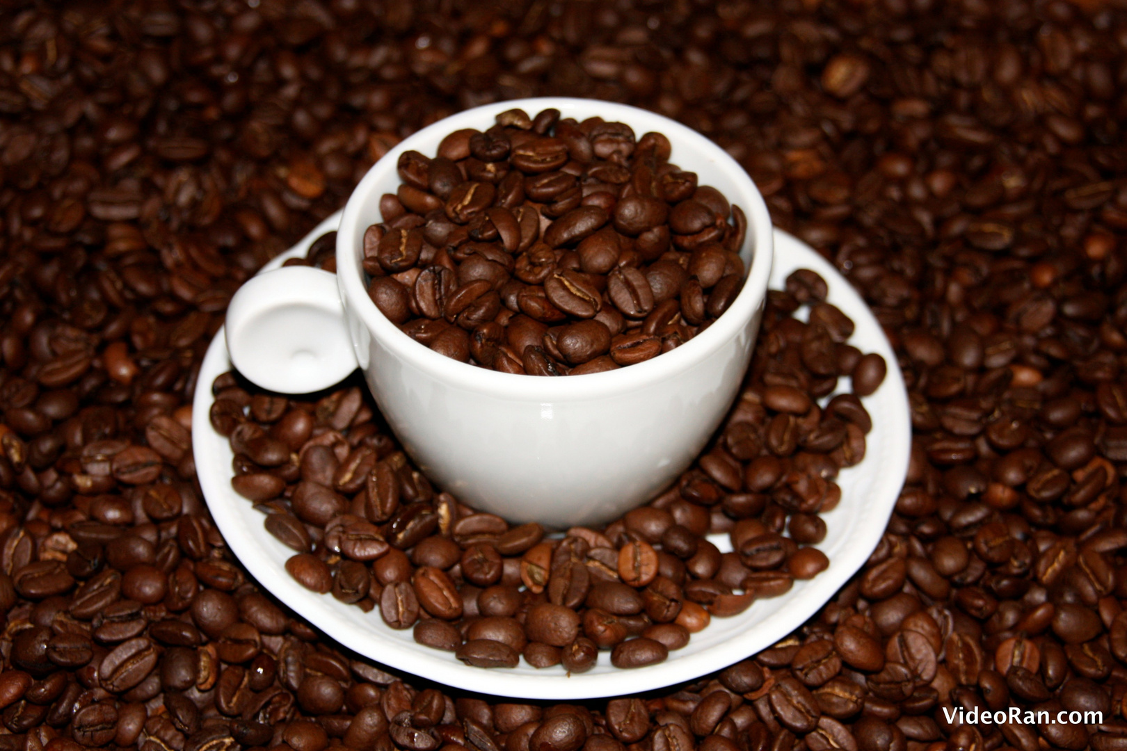 Morning Coffe....