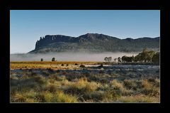 Morning mist on overland track