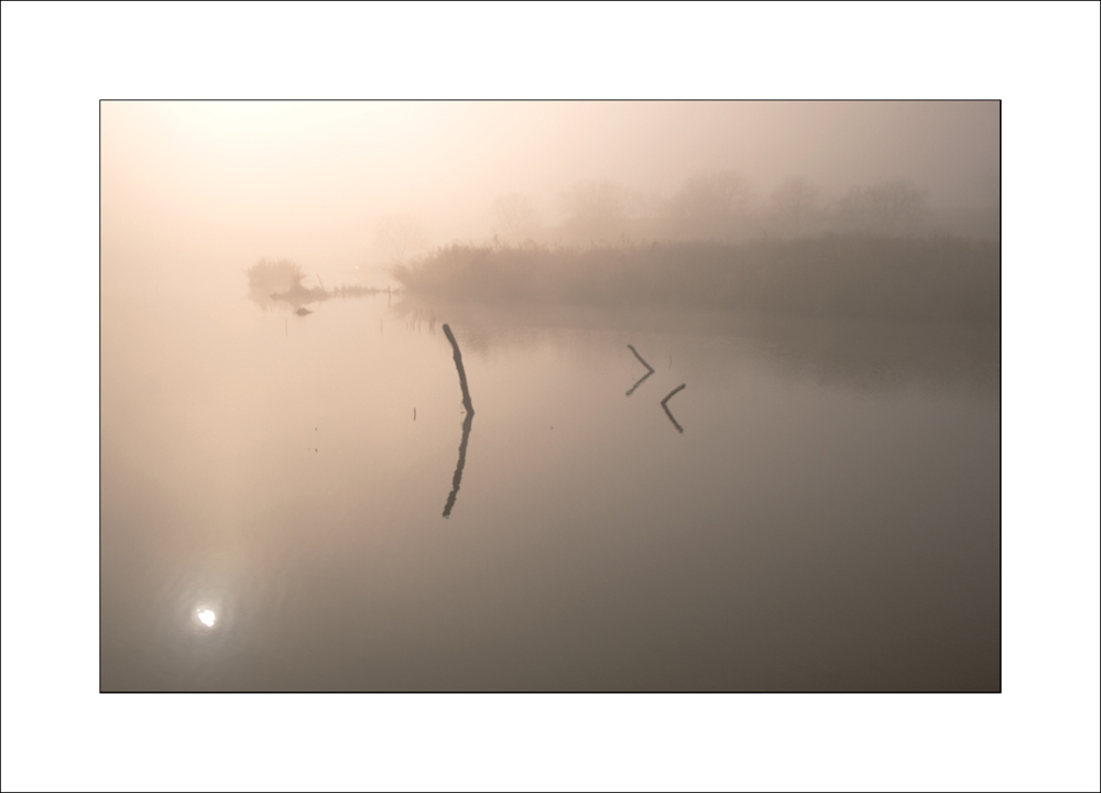 morning of November