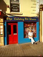 Morning walk through Galway II (day 4)