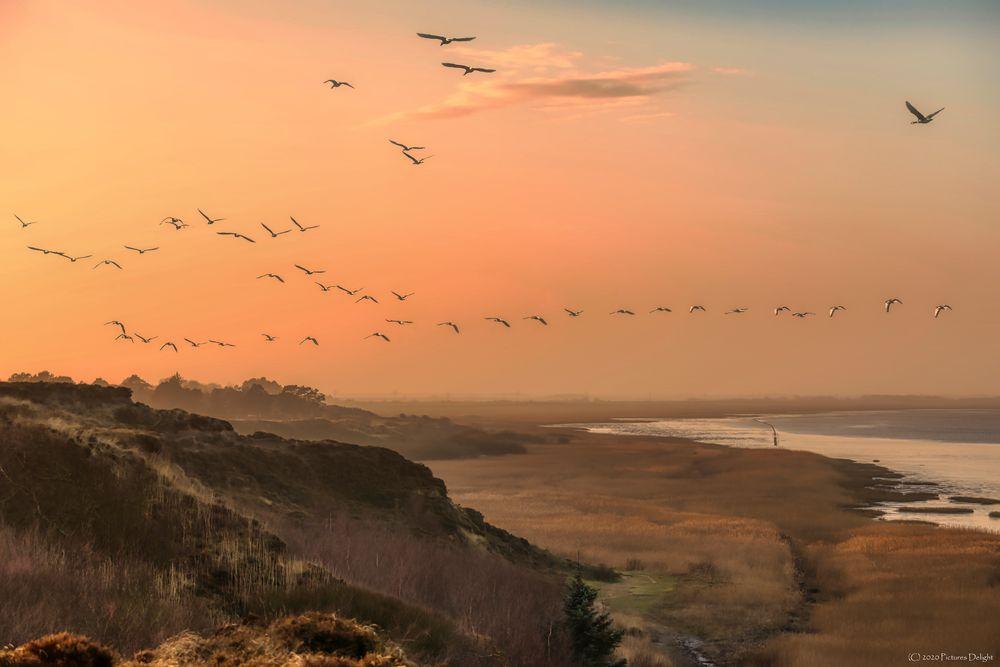 - Morsum Kliff -