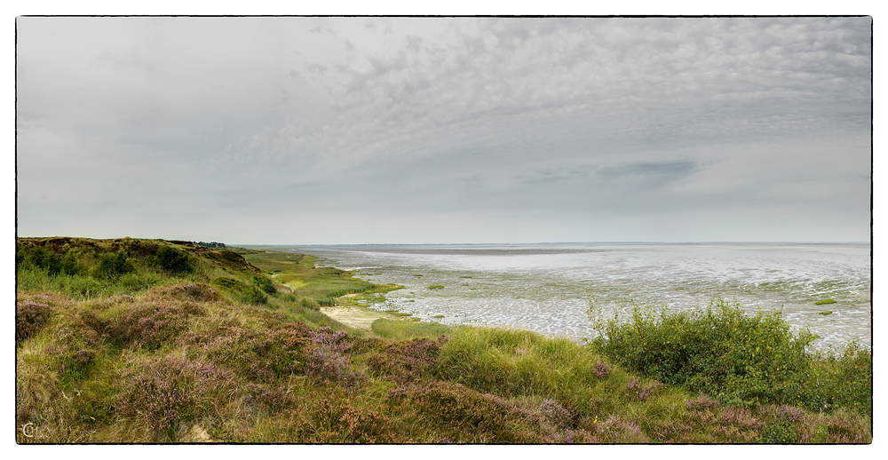 Morsumer Kliff, Sylt (I)