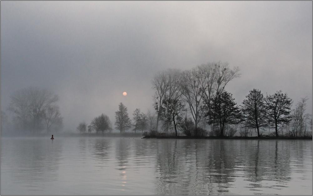 Mosella Sunrise II