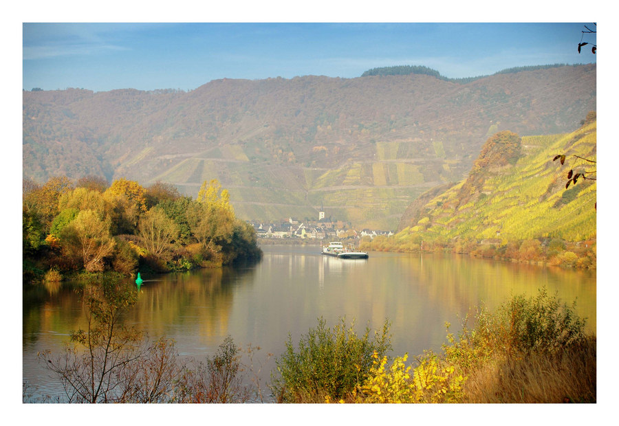 Moseltal morgens im Herbst