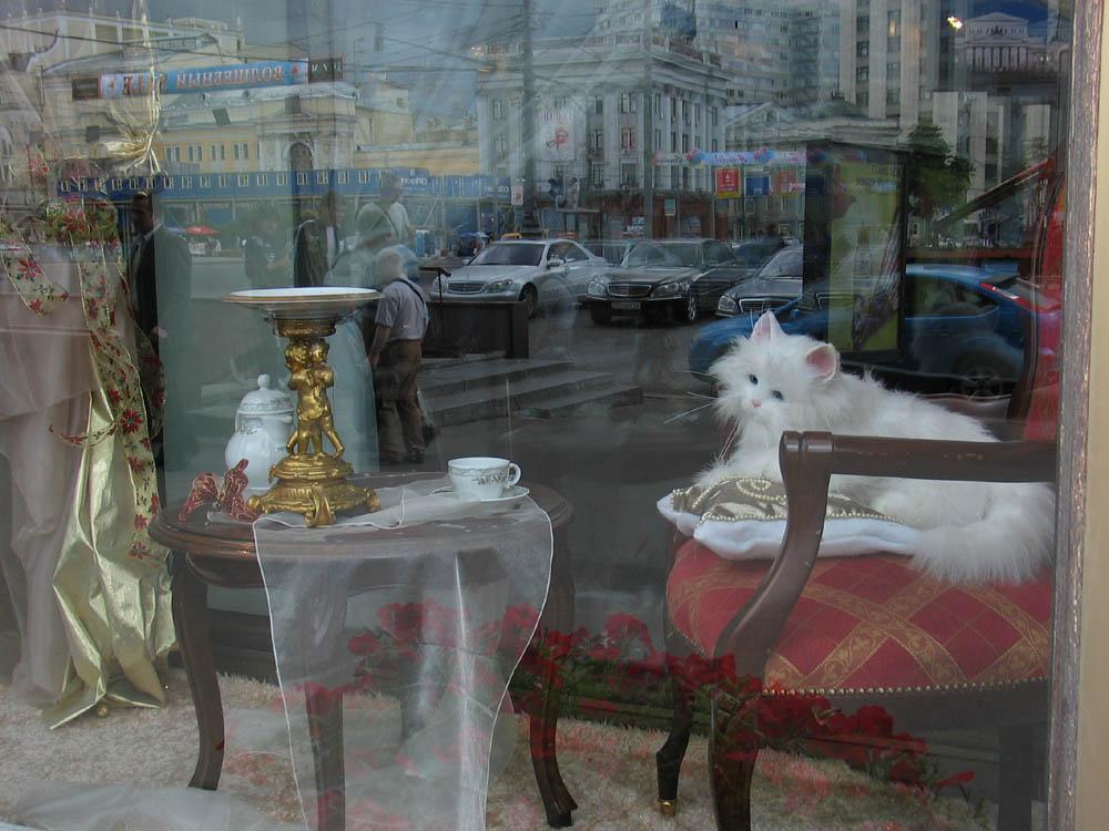 Moskaureise 11