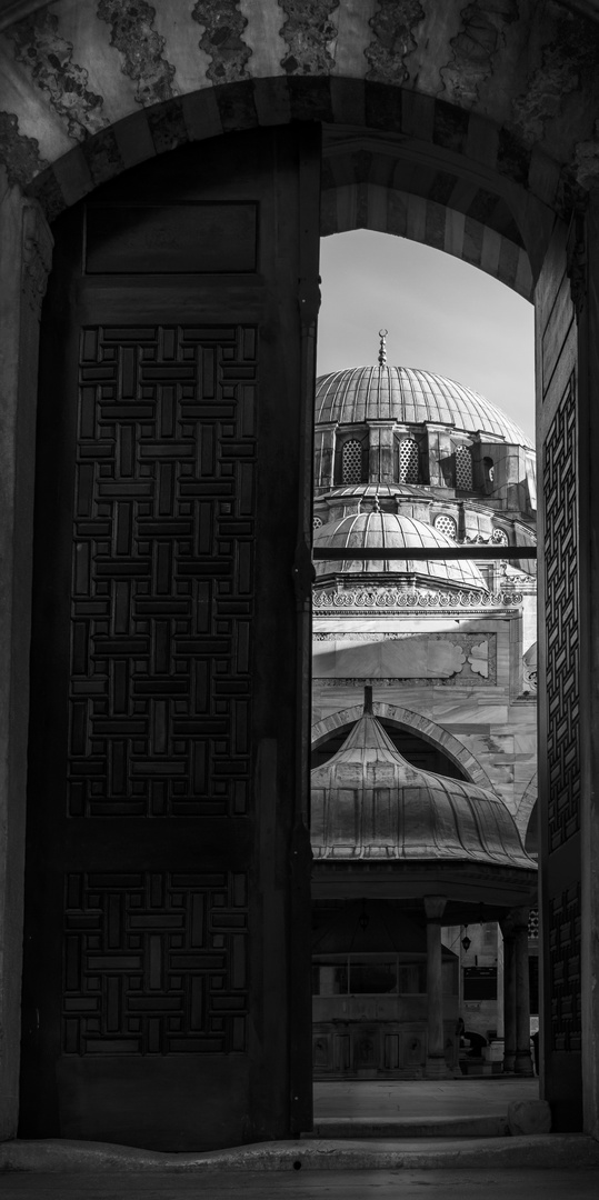 Mosque Behind the Door (Black and White)