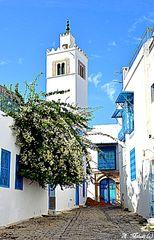 mosquée de Sidi Bou