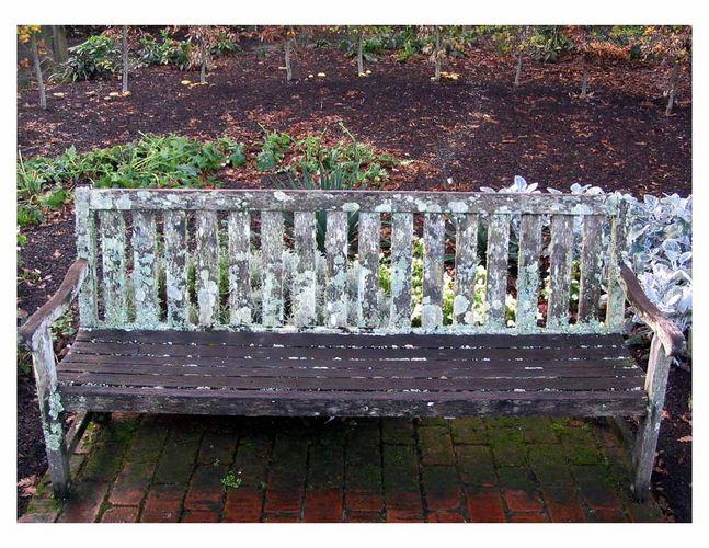 Mossy Seat