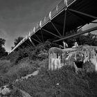 Most Slobody - Liberty Bridge 4