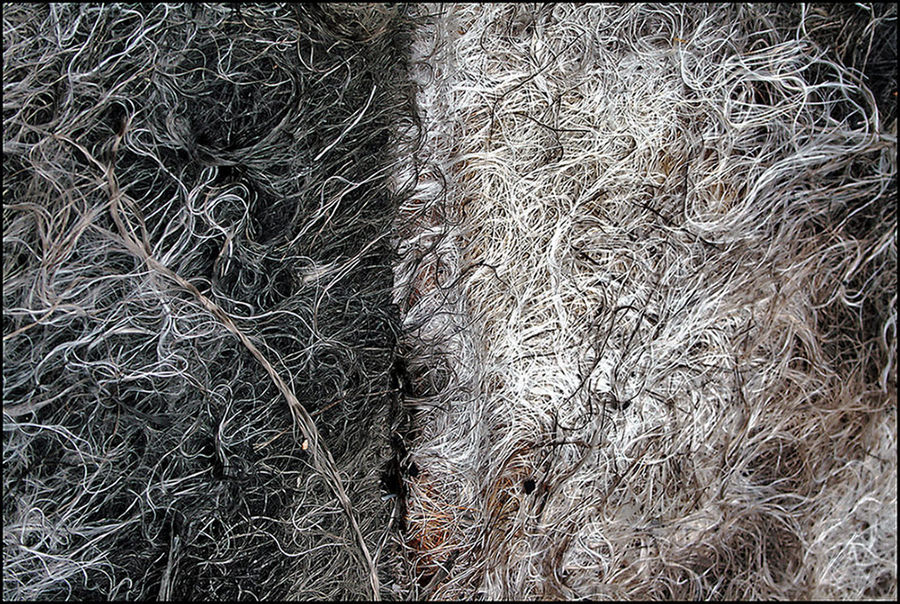 "Mostra online di Biagio Donati ""Burned textures"" - 6."