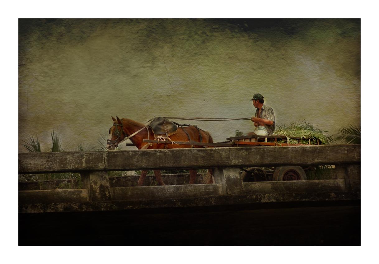 """Mostra online di Enrico Ranaldi """"Storie di vita"""" - 9."""