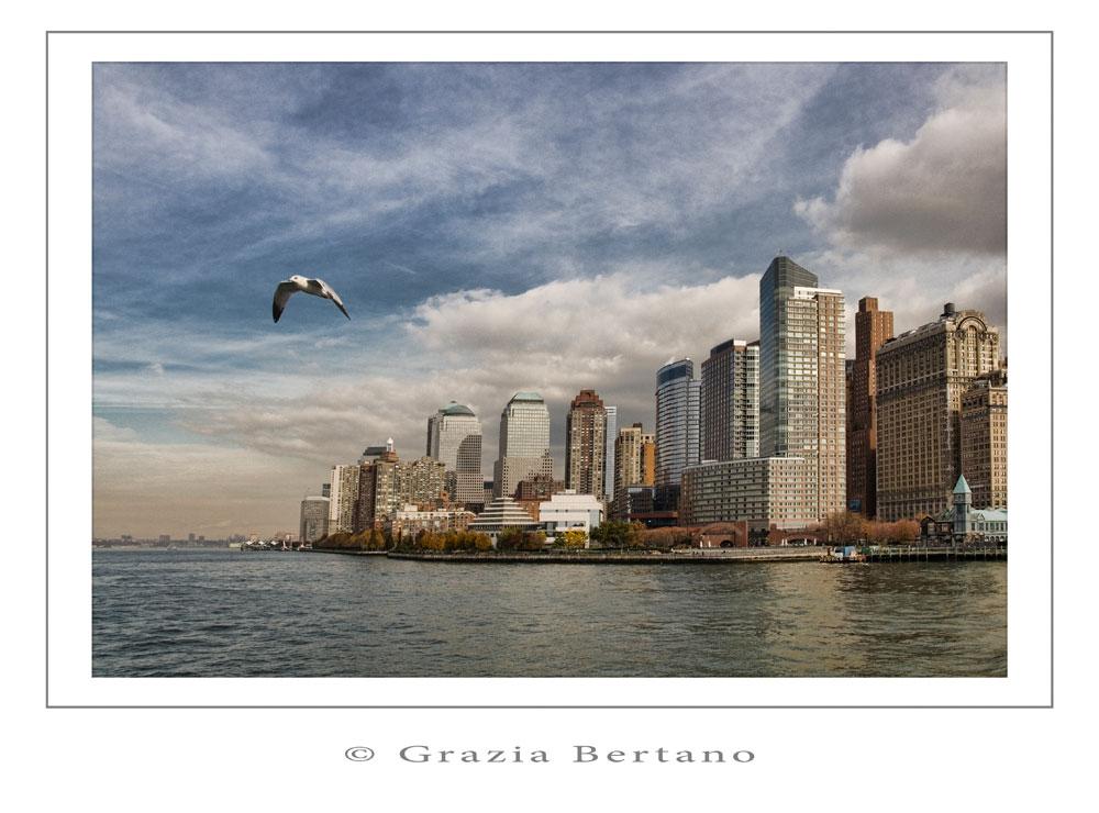 "Mostra online di Grazia Bertano ""Autumn in New York"" - 1. Flight from New York"